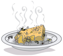 A plate with rotten cheese and different germs.
