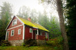 Old red cottage in the forest