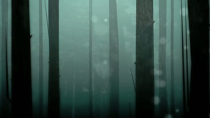 Enchanted Forest Loop HD