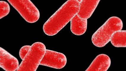 EHEC Bakterien 3D Render