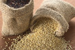 Raw white and red quinoa grains in jute sack on wood