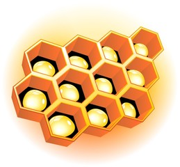 Gocce di Miele in Alveare-Beehive with Honey Drops-Vector