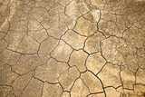 Cracked and Arid  Ground without water poster