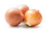 Fototapety Onion