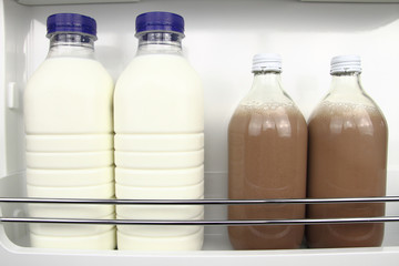 Bottles of white and chocolate milk in the fridge