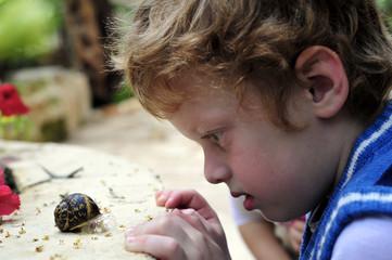 Boy considering the snail