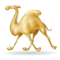 cammello al trotto