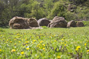 Old haystacks