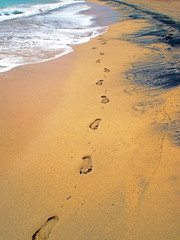 Huellas en la orilla del mar