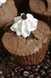 Muffins mit frischen Kaffeebohnen