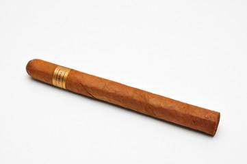 sigaro - fondo bianco