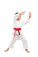 Karate boy exercising