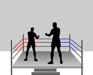 luta de box