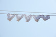 White underpants hanging to dry - 33013457