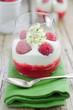 Himbeer-dessert