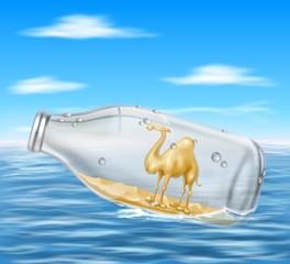cammello marino