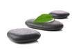 Zen basalt stones with leaf