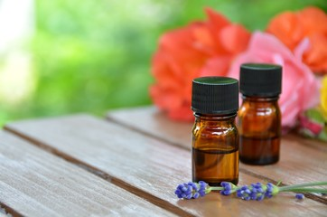 essential oils the herbs