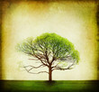 Nature Design. Vintage Tree Background
