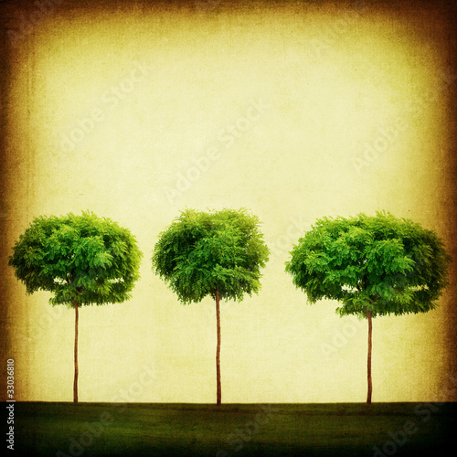 Retro Background. Growing Trees