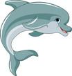 Fototapete Aquarium - Wasser - Meeressäuger