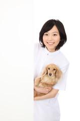 犬とホワイトボードと白衣を着た女性