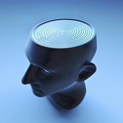 Male head figure with labyrinth brain