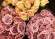 Rosa und gelbe Rosen