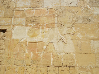 Marsa Alam, engraving of an animal on the wall
