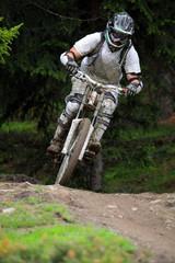 downhill - mountain bike