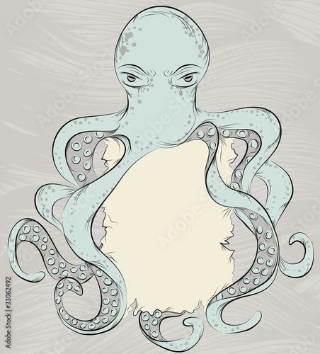 Hand drawn detailed octopus illustration