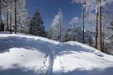Schneelandschaft im Alpstein