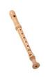 Holzblasinstrument