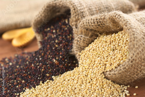 Raw red and white quinoa grains in jute sack on wood