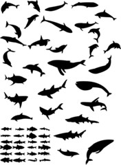 collection of sea animals silhouette - vector