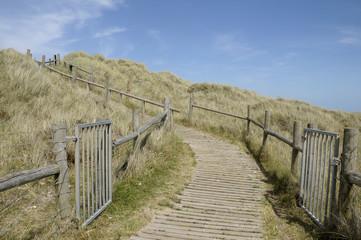 Path through dunes near Littlehampton in Sussex