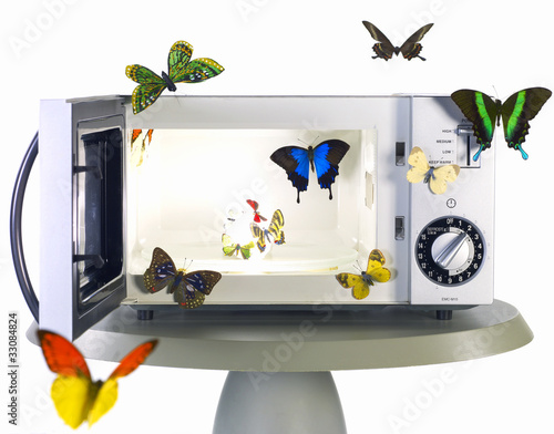 butterfly and microwave oven
