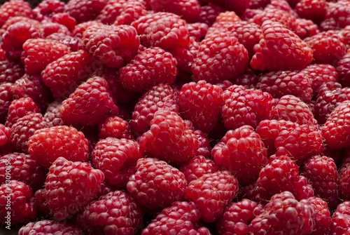 Freshly picked red raspberries