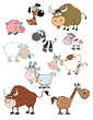 Cartoon Animals Raster Collection