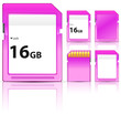 set of pink sd card isolated on white background