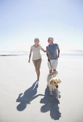 Senior couple with dog walking on beach