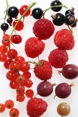 frutti di bosco,ribes,lampone,uva spina