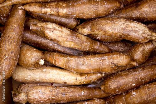 cassava yucca rhizomes vegatable food pattern - 33116830