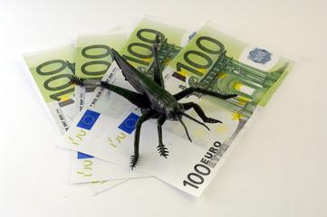 Euroscheine mit Heuschrecke