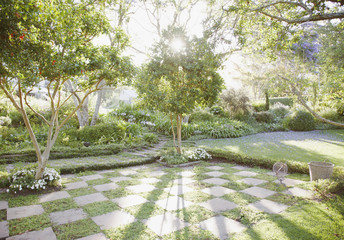 Sun shining through trees in garden