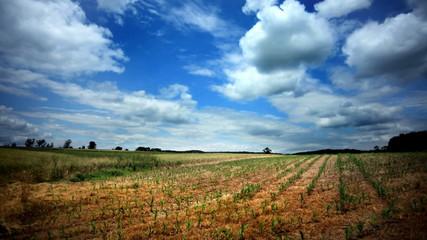 Timelapse Over Farmland