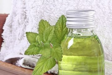 Wellness with lemon balm