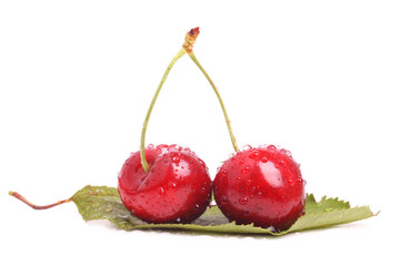 Two red cherries on a leaf isolated on white background