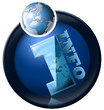 icon information with blue terrestrial globe and written info