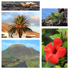 Lanzarote / Collage